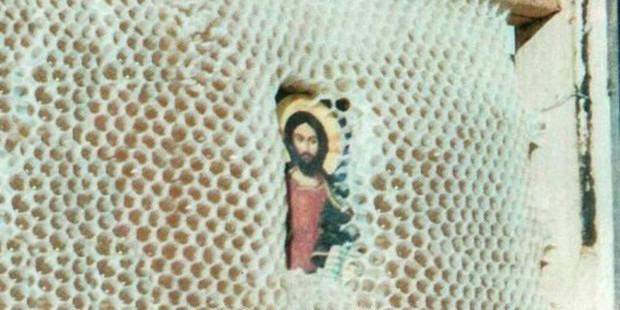 Chuyện lạ: Đàn ong xây tổ bảo vệ các ảnh tượng Thánh
